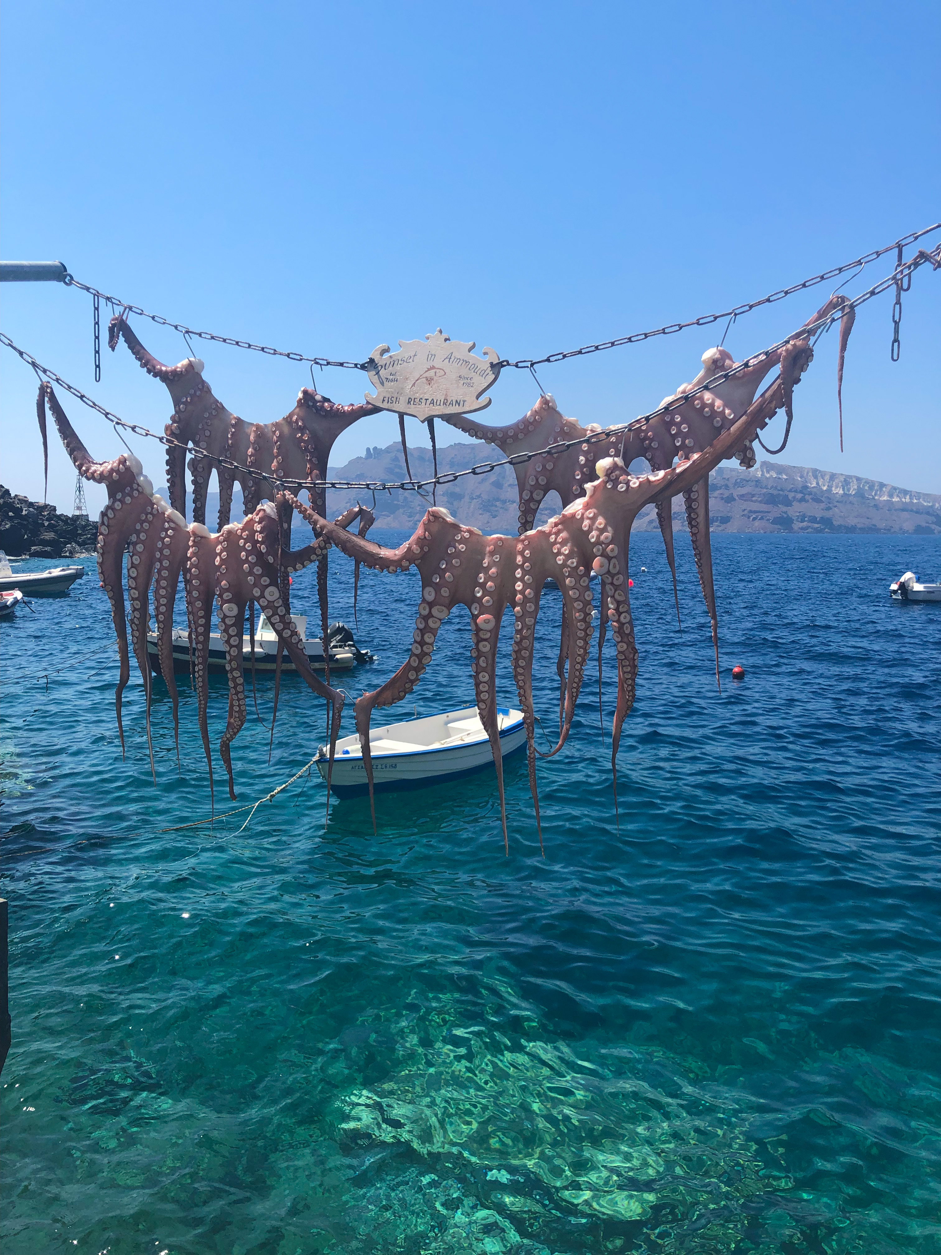 Octopus drying in the sun at Amoudi Bay, hanging over the water with boats anchored in the background.